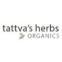Tattva's Herbs logo icon