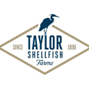 Taylor Shellfish Farms logo icon