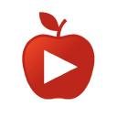 Teacher Tube logo icon