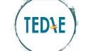 Tedae logo icon