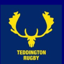 Teddington Rfc logo icon