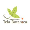 tela-botanica.org logo icon