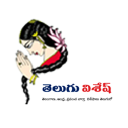 Telugu Wishesh logo icon
