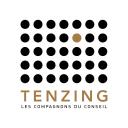 Tenzing Conseil logo icon