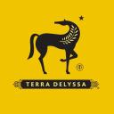 Terra Delyssa logo icon
