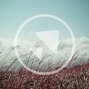 Terramundi logo icon