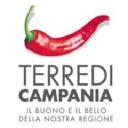 Terre Di Campania logo icon
