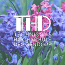 Th Deggendorf logo icon