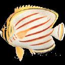 That Quiz logo icon