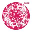 Agar logo icon