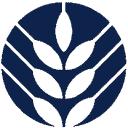 The B&Cma logo icon