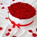 The Billion Roses logo icon