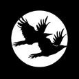 The Black Ravens Logo