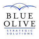 The Blue Olive logo icon