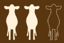 The Brown Cow Pub logo icon
