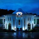 The Butterfly Palace logo