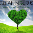 Read Cleaning Gurus Reviews