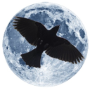 The Dark Store™ logo icon