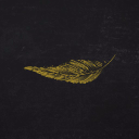 The Dead Canary logo icon