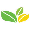 The Green Office logo icon