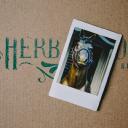 The Herb Garden logo icon
