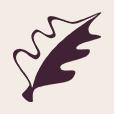 The International logo icon