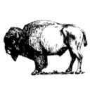 The Manitoban logo icon