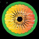 The Mysterious India logo icon
