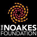 The Noakes Foundation logo icon