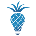 The Pineapple Agency logo icon