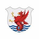 The Race Club logo icon