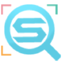 The Seo Tools logo icon