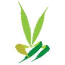 The Stoned Society logo icon