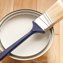 The Surface Master logo