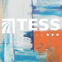 The Tess Group logo icon