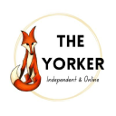 The Yorker logo icon