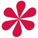 De Novo Alternative Marketing logo icon
