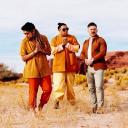 A R I Z O N A logo icon