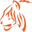 Tiger Construction logo icon