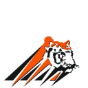 Tiger Sanitation Company Logo
