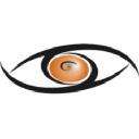 Tiger Team Consulting logo icon