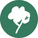 Timberplay logo icon