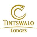 Tintswalo logo icon