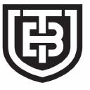 Titanium Buzz logo icon
