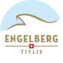 Titlis logo icon
