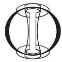 Tokamak Energy logo icon