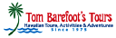 Tom Barefoot logo icon