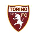 Torino logo icon