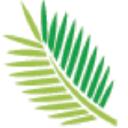 Torreya Insights logo icon