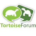 Tortoise Forum logo icon